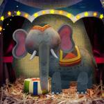 bonnenuit-cirque-éléphant