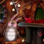 bonnenuit-cirque-lapin