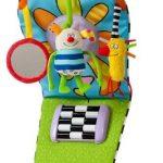 Taf-Toys-Kooky-Tableau-dEveil-de-Voiture-0
