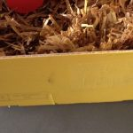 Cagette côté jaune