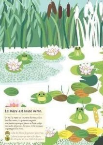 Cahier nature mare