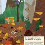 Mon cahier de nature dans la forêt