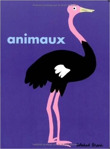 Top 50 : animaux