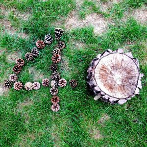 Land art nombre 40