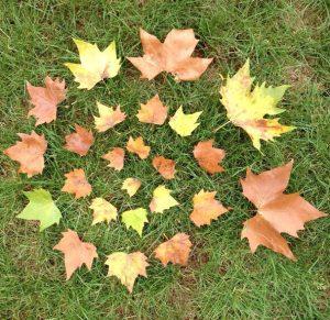Land art spirale de feuilles