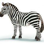 Schleich-14392-Figurine-Animaux-Zbre-Femelle-0