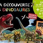 A-LA-DECOUVERTE-DES-DINOSAURES-EDITION-2015COLL-MES-PREMIERS-COFFRETS-DAPPRENTISSAGE-0
