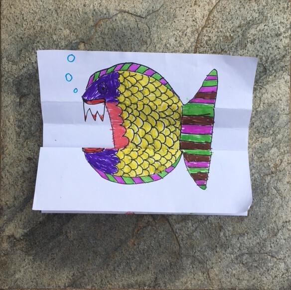 poisson-2