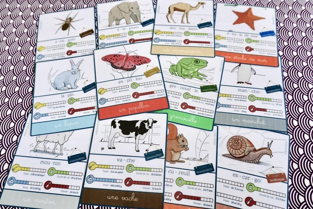 cartes de nomenclature à imprimer les animaux