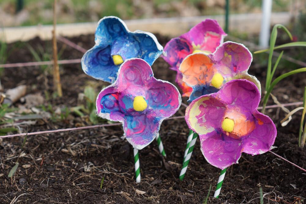 activité manuelle pour créer un bouquet de fleurs à partir de boite à oeuf. peinture enfant