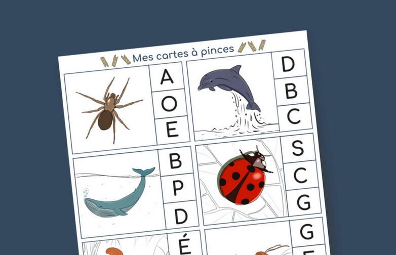 Activites Montessori Pour Un Apprentissage Des Bases Solides
