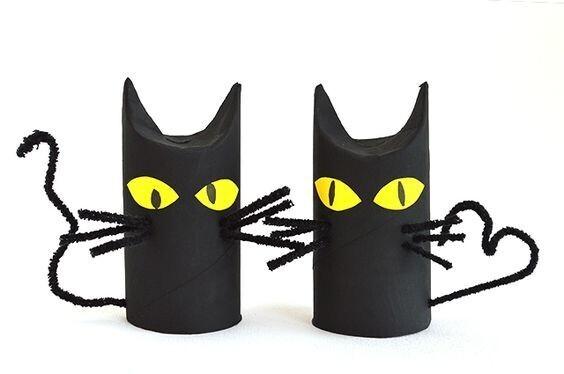 Chats en rouleau de papier toilette