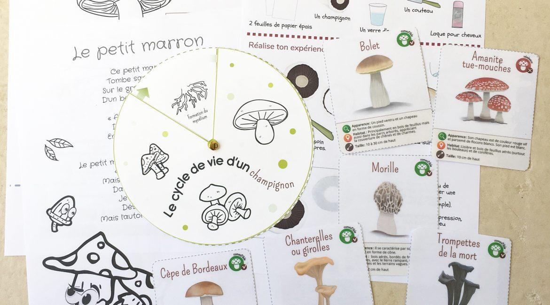 Les P'tits Ouistitis et les champignons