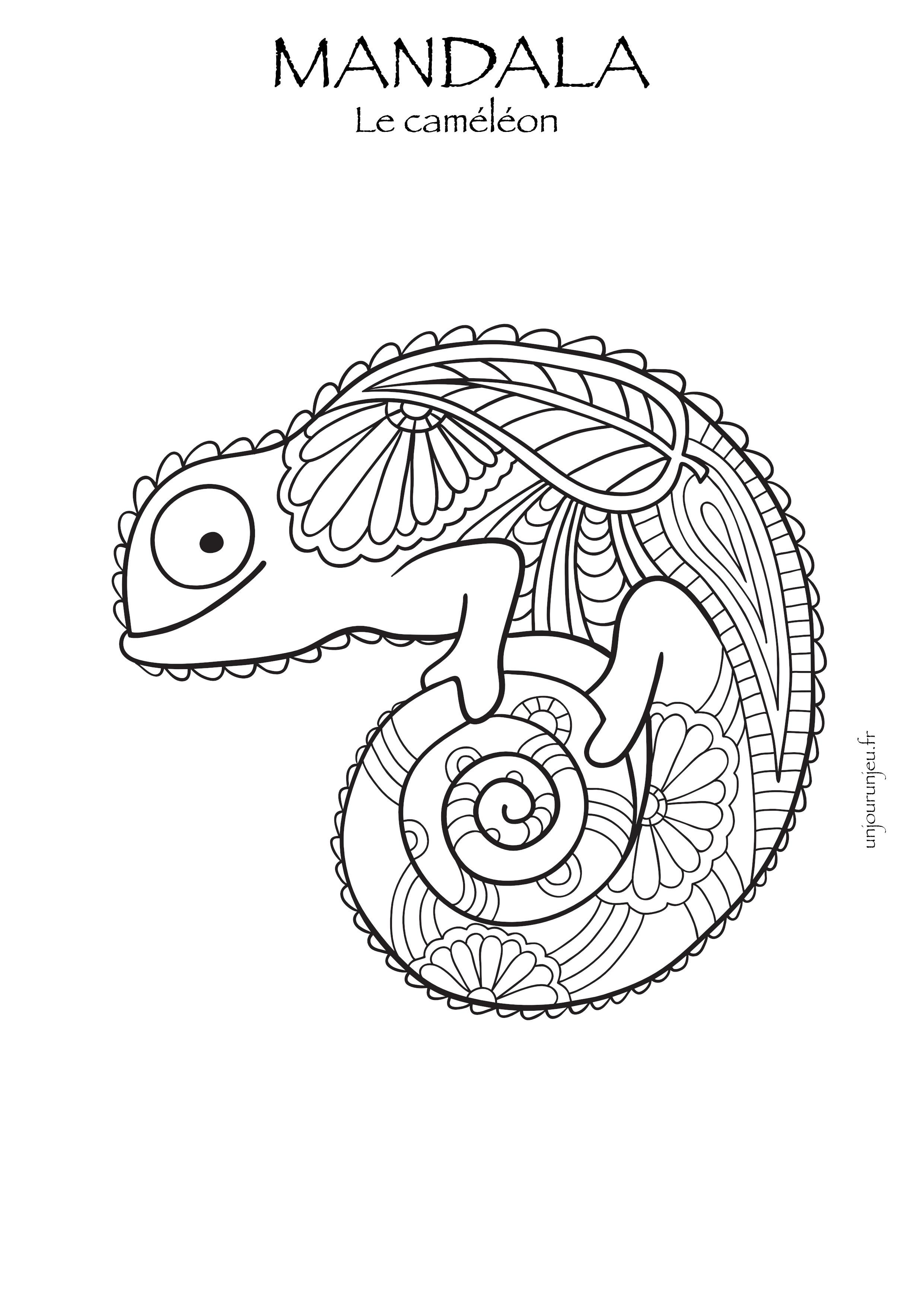 Coloriages mandalas animaux à télécharger, pour enfants et ...