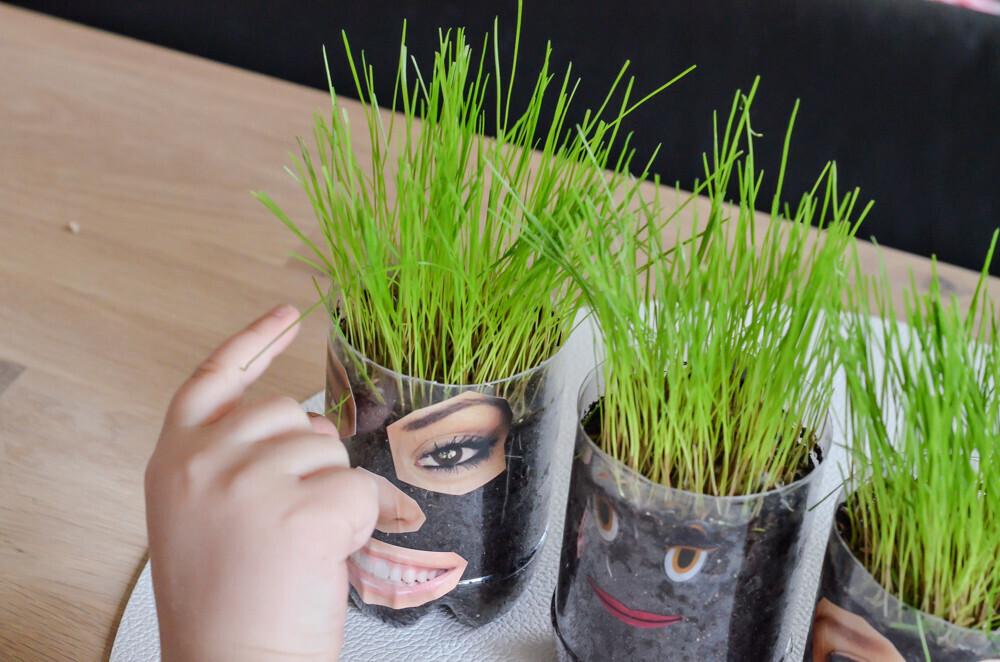 Activité créative sur le thème du printemps Activité manuelle Des personnages rigolo aux cheveux qui poussent. Gommettes Création de personnage avec des cheveux en gazon, pelouse, herbe Un jour un jeu