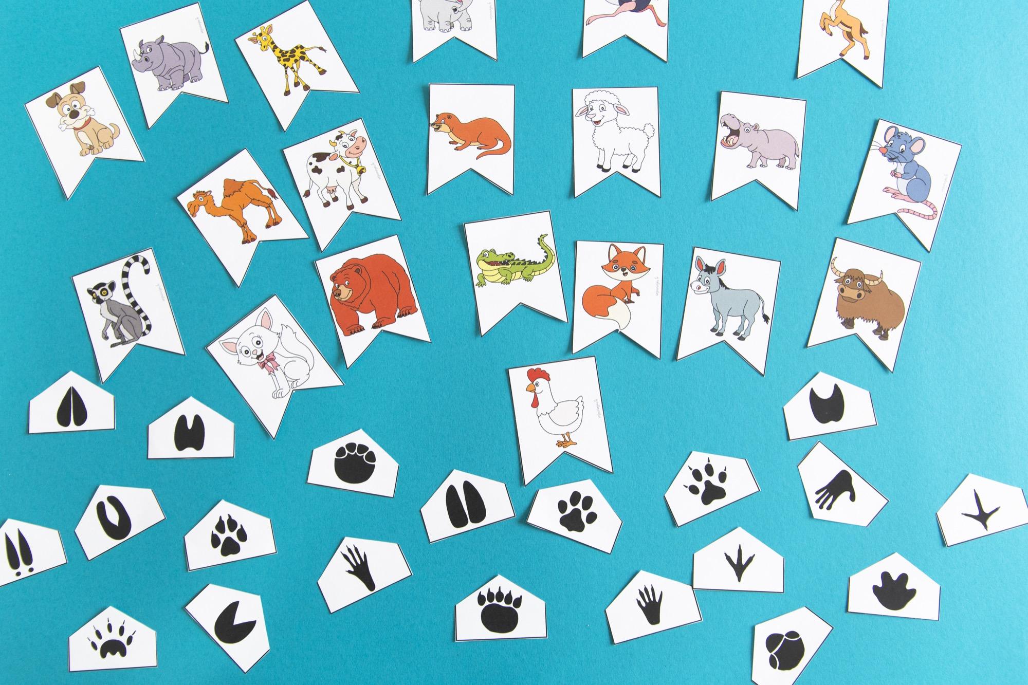 Empreintes animaux : étape 4