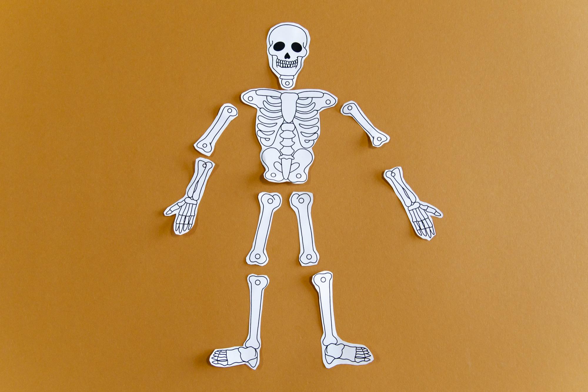 Mon squelette à faire danser - étape 3